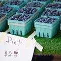 Why some Michigan farm workers still aren't making minimum wage