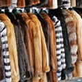 Animal rights activists, rejoice! Ann Arbor votes to ban sale of new fur products