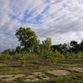 Detroit's Hantz Farms is beginning to look like a land grab after all