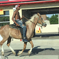 The mysterious horseman of Northwest Detroit