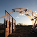 Artist Chico MacMurtrie, U-M students build robot that could cross Mexican wall