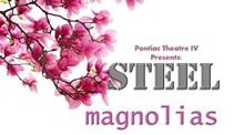 8a469a8e_steel_mags_logo.jpg