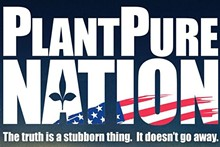 93c13736_plantpure_nation.jpg