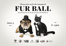 1fc2389d_fur_ball_front.png