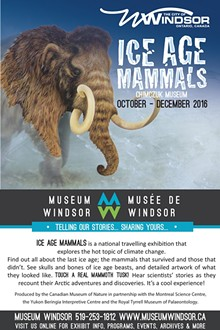 51cd6ab0_museum_windsor_ad_-_ice_age.jpg