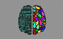 543ed25b_logical-and-creative-brain--1920x1200-vector-wallpaper.jpg