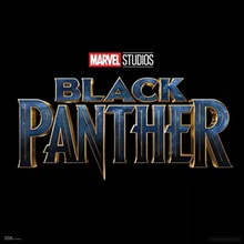 c84591dc_black_panther_picture.jpg