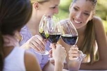 Wine Tasting on the Van Dusen Terrace, Birmingam