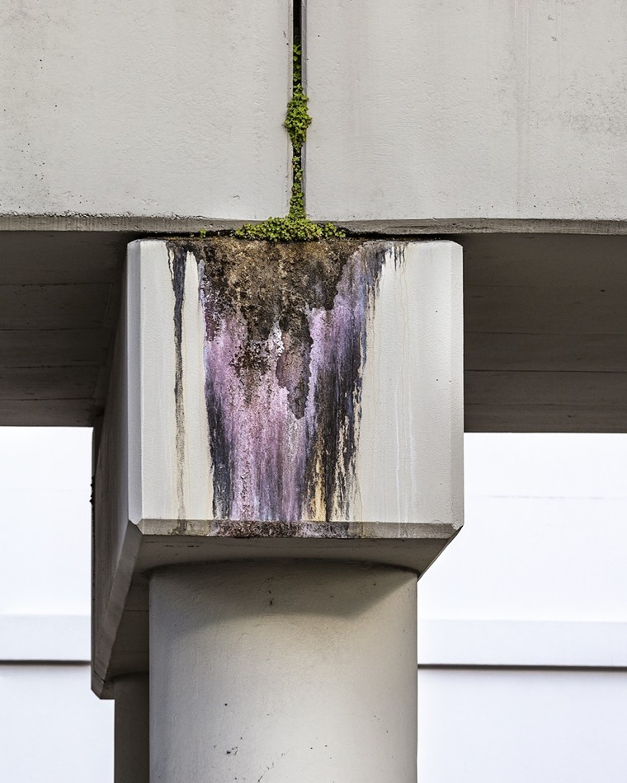 Concrete Erosion, 2019 - PHOTO BY ANASTASIA SAMOYLOVA