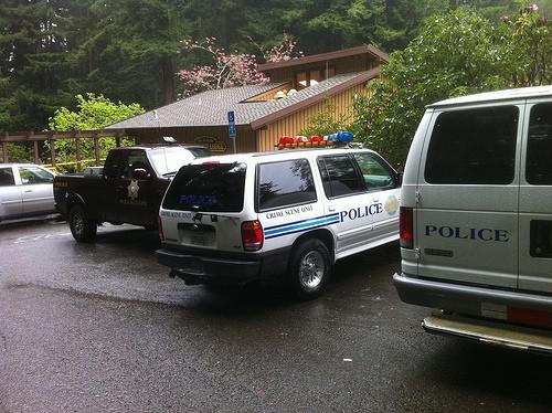 policecars.jpg