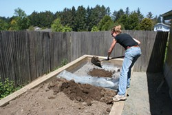 PHOTO BY GENEVIEVE SCHMIDT - A FrIend of the Author gopher-proofs a vegetable garden bed.