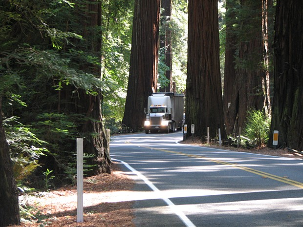 A semi truck navigates the curves through Richardson Grove - PHOTO COURTESY THE CALIFORNIA DEPARTMENT OF TRANSPORTATION