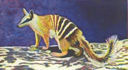 MARY HARPER - Anteater