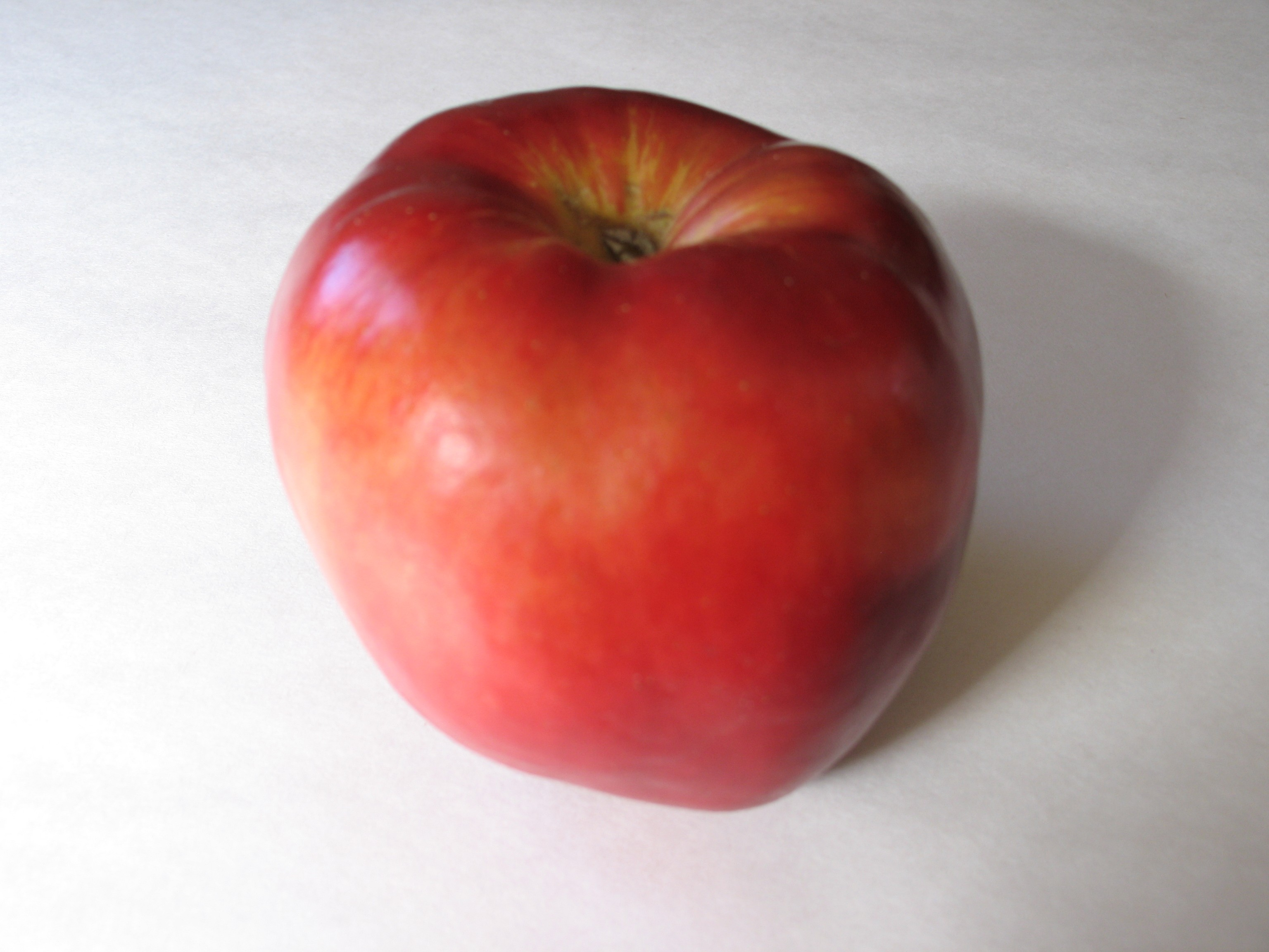 apple - PHOTO BY BOB DORAN