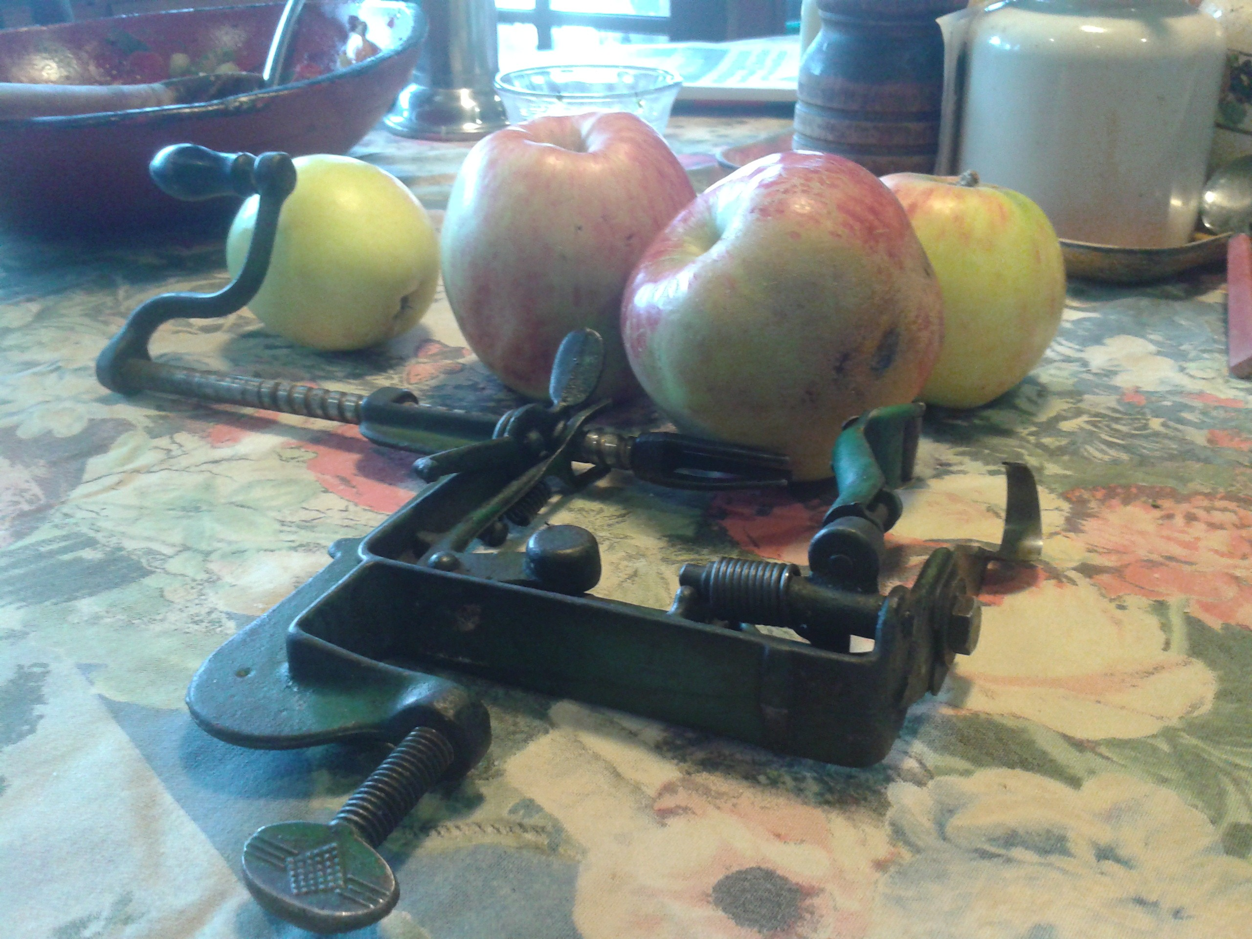 Apples and peeler - PHOTO BY JADA CALYPSO BROTMAN