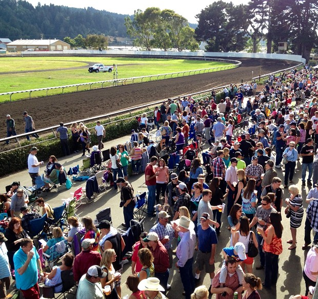 At the Ferndale racetrack on Saturday, Aug. 17, 2013. Wow, lots of bettin' people out there. - PHOTO BY HEIDI WALTERS