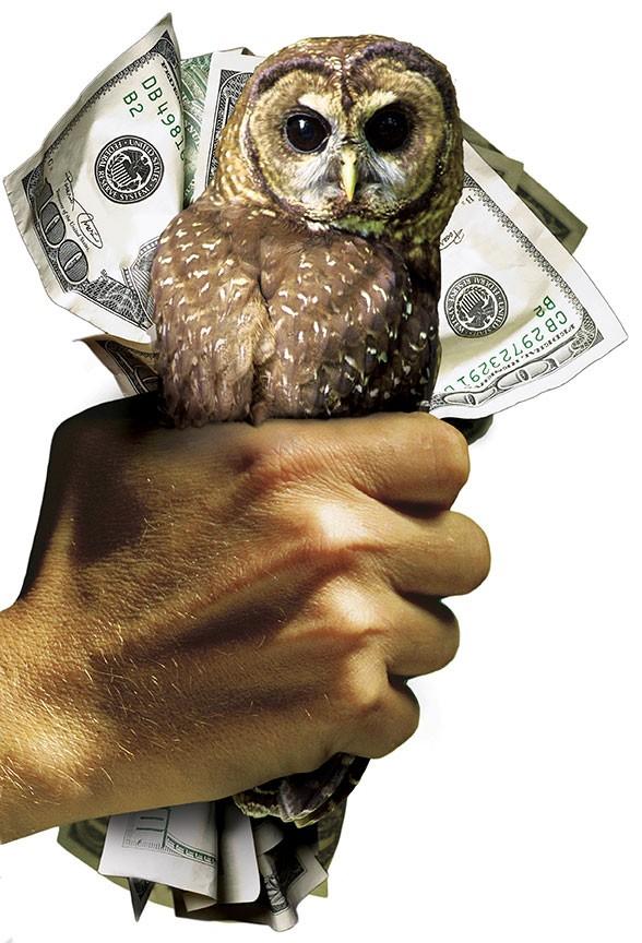 041212ncj_owl_money.jpg