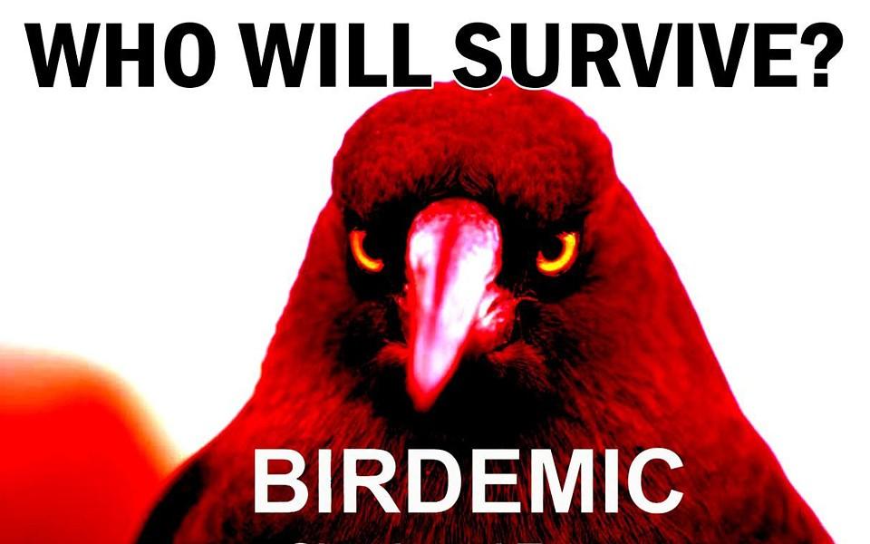 Birdemic - WHO WILL SURVIVE?