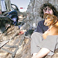 Everyone Is Connected Brad Elliott, a traveler who these days is volunteering daily at Arcata Endeavor, with his little dog Siren and a friend's dog-beast, Jazz, who's been running people ragged all morning. Photo by Heidi Walters