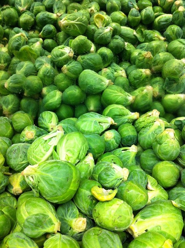 Brussels sprouts - PHOTO BY BOB DORAN