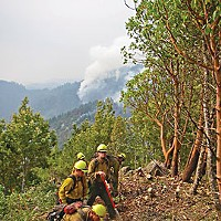 Our Fire, Our Fight Building a fireline is dirty work: Firefighters cut trees, drag back slash and scrape to mineral soil. Behind them, their crewmates are already lighting the backburn. Photo by Susan Terence