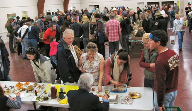 Checking out the 'shrooms at the Mushroom Fair. - DON BRYANT/HUMBOLDT BAY MYCOLOGICAL SOCIETY