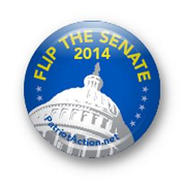 flip_the_senate.png