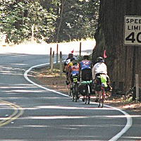 Parting The Redwood Curtain Cyclists negotiate a narrow stretch of Highway 101 through Richardson Grove. Photo courtesy Caltrans