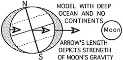Diagram of the pull of the moon on the Earth, by Don Garlick.