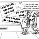 Dispensary Bargains!