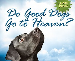 a370488a_facebook.do_good_dogs_go_to_heaven.jpg