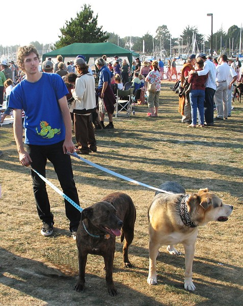dogs at Woofstock - PHOTO BY BOB DORAN