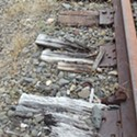 Environmental Groups Appeal Ruling in North Coast Railroad Authority Case