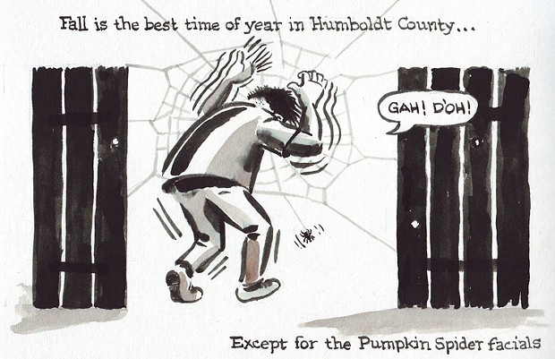 Fall In Humboldt County
