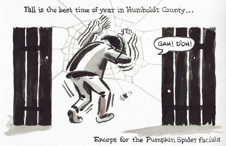 Fall In Humboldt County - JOEL MIELKE