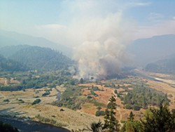 PHOTO BY KEN MALCOMSON - Fires last August merged into two major complexes in the Klamath and Six River national forests and burned 37,000 acres. The human-caused Orleans Fire, above, was one of them.