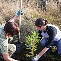 Saving Sam Former AmeriCorps members Natalie Arroyo and Amber Shows plant a tree in memory of Sam. Photo by Heidi Walters