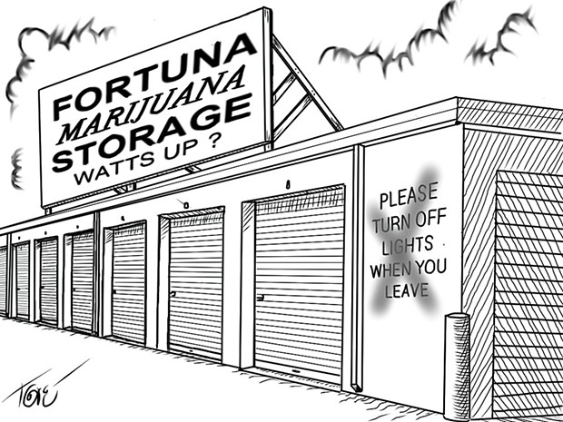 Fortuna Marijuana Storage
