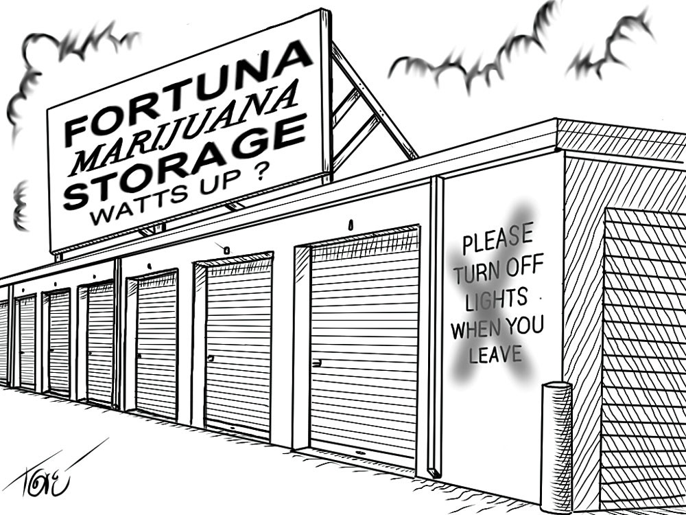 CARTOON BY TERRY TORGERSON.