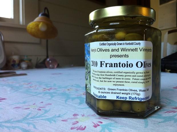 Frantoio Olives - PHOTO BY BOB DORAN