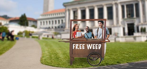 free-weed-at-berkeley.png