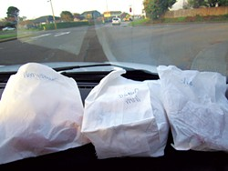Fritters on the dash for science.