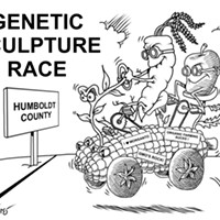 Genetic Sculpture Race