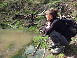 PHOTO BY AMY CIRINCIONE - Hiking Lacks Creek, slow and steady.