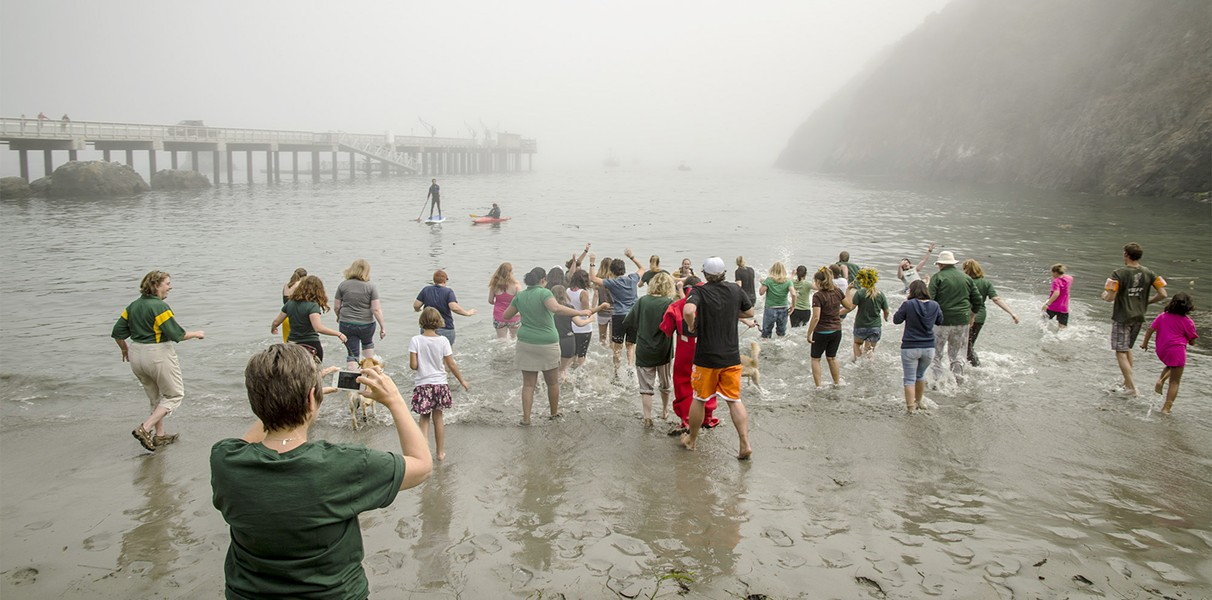 HSU students, faculty and staff take to the waters of Trinidad Harbor in response to the Ice Bucket Challenge levied by Chico State University. - MARK LARSON PHOTOGRAPHY