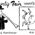 Humboldt County Fair