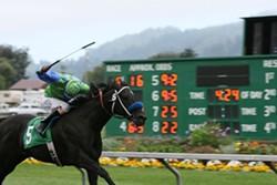 f563b53a_humboldt_county_fair_10_horserace.jpg