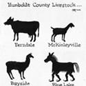 Humboldt County Livestock