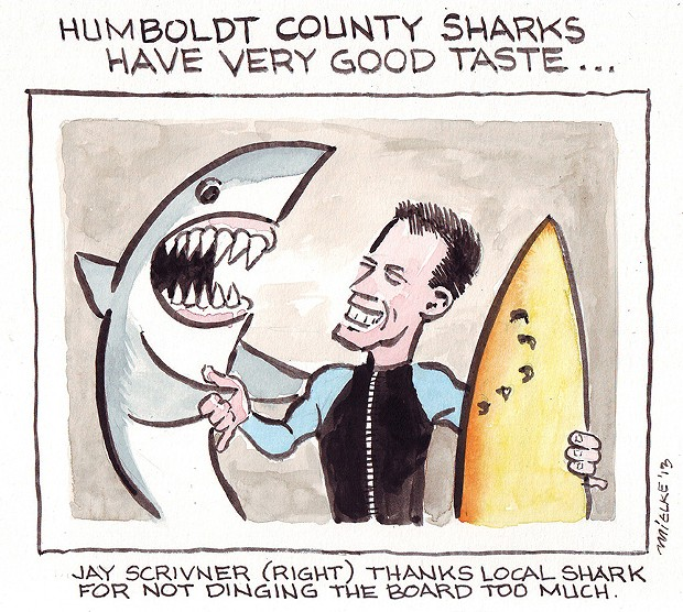 Humboldt County Sharks Have Very Good Taste