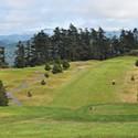 Humboldt Greens